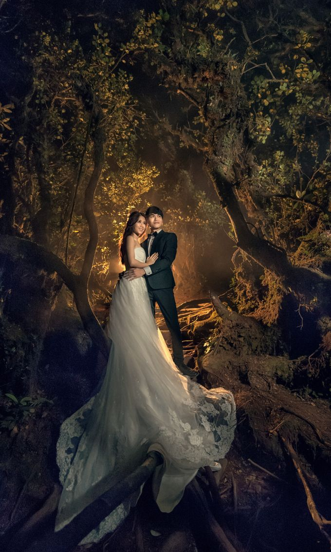 Pre Wedding Cameron Highland by GMPS Wedding Film and Photography - 001