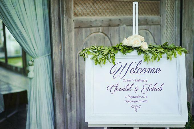Organic Elegance in Seventh Heaven by Hari Indah Wedding Planning & Design - 001