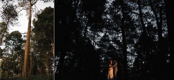 Prewedding - Part 1 by SÁL PHOTO - 001