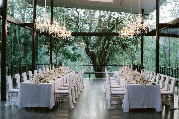 Elegant Peach Nude Wedding at Tirtha Glasshouse by Silverdust Decoration - 033