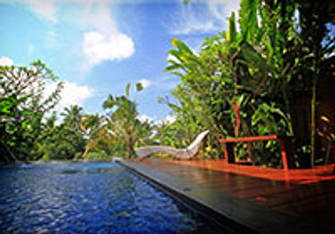 One Bed Room Pool Villa by Ubud Green Resort Villa - 005