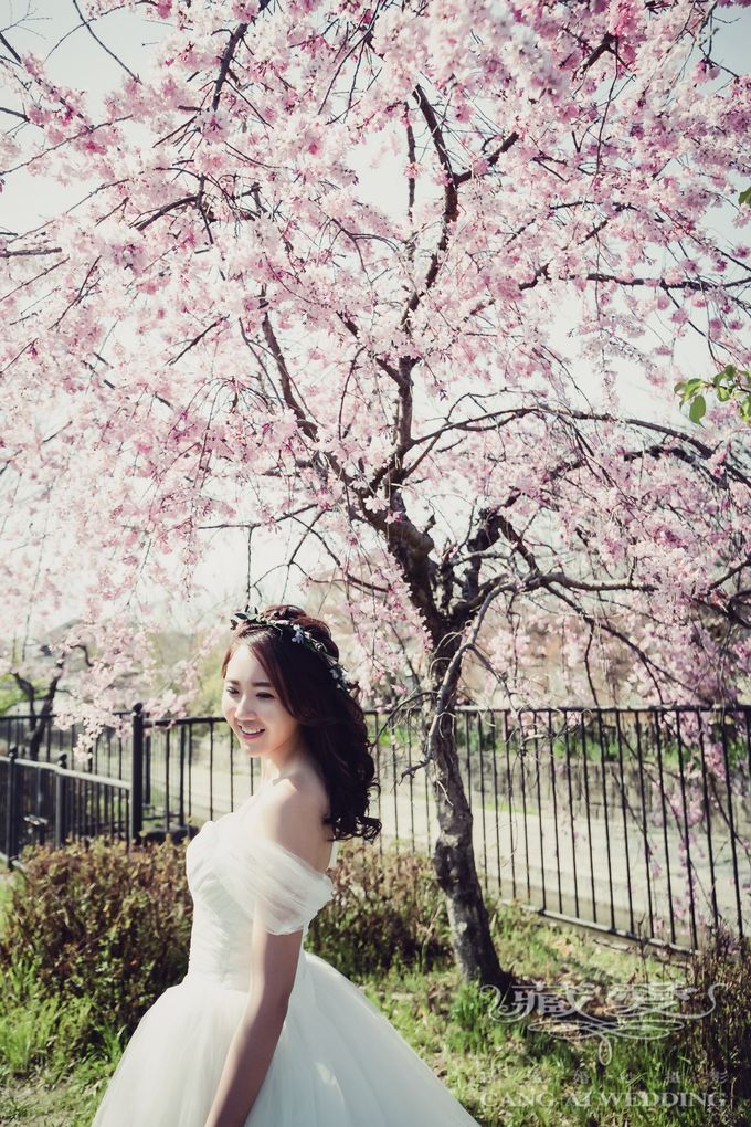 Cherry Blossom by Cang Ai Wedding - 002