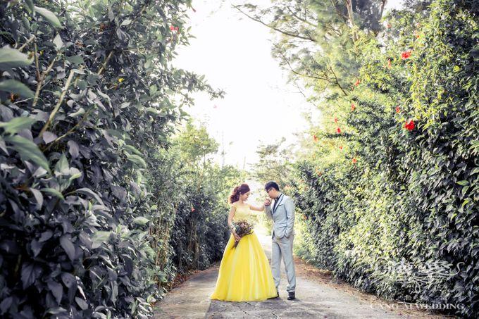 Natural by Cang Ai Wedding - 002