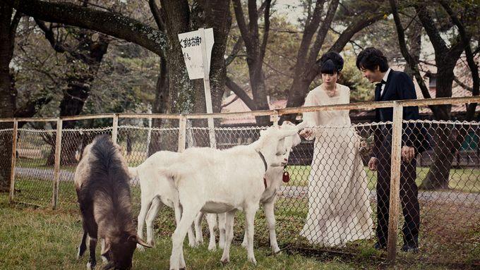 Garden Wedding in provincial Japan by thegaleria - 004