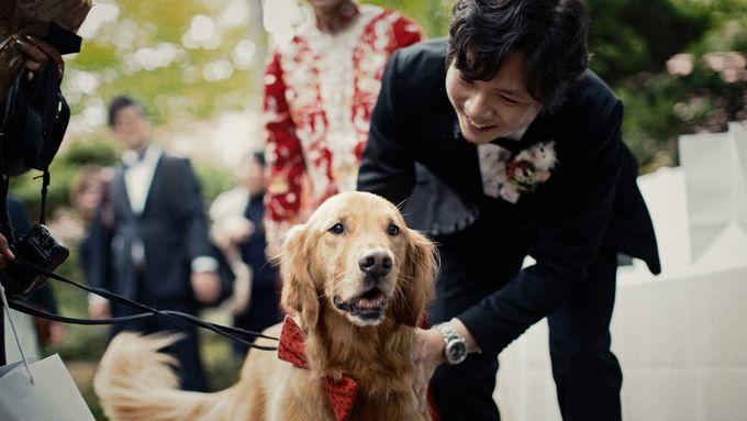 Garden Wedding in provincial Japan by thegaleria - 026