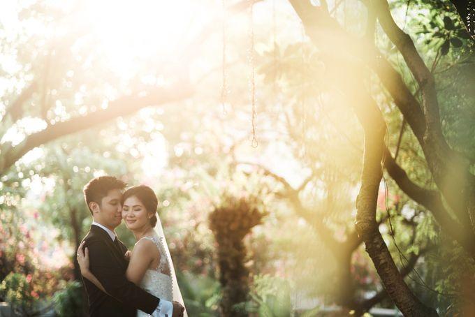 Ivy and Franz by The Daydreamer Studios - 037