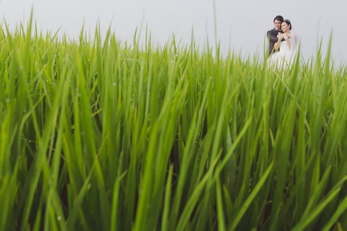 Pre-Wedding of SL & YS by SimplyBenji Photography - 004