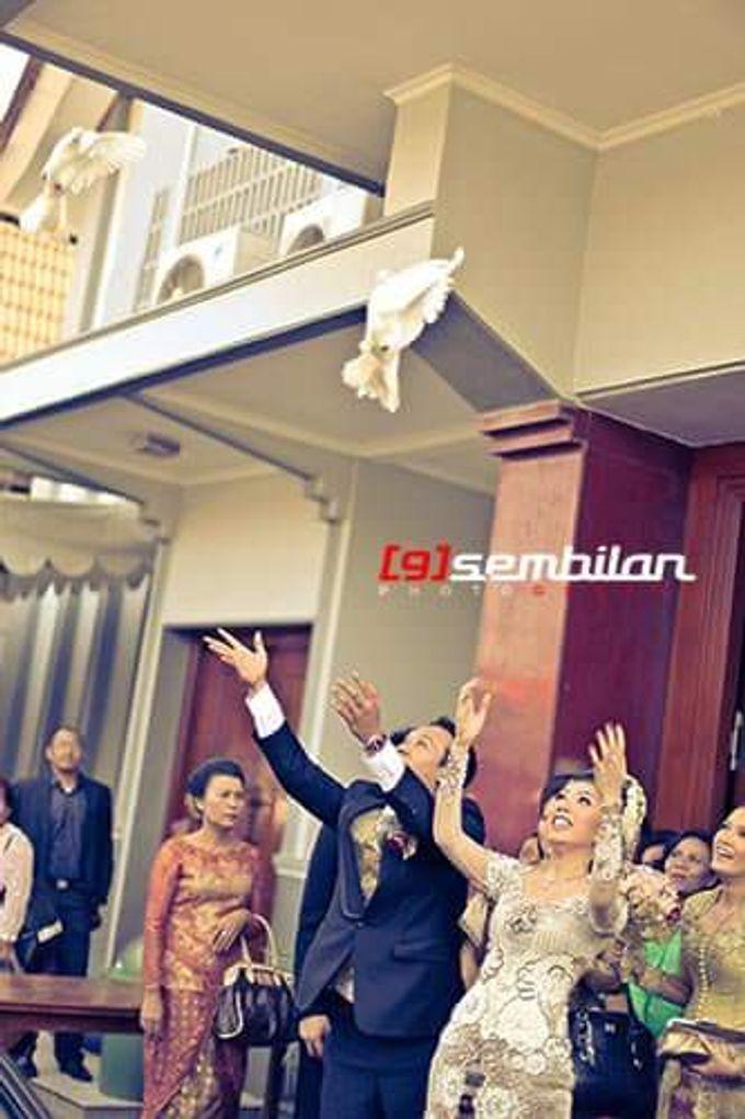 Sembilan photography by Sembilan Photography - 020