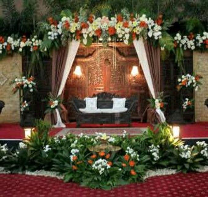 Dina Rose Wedding Gallery by Dina Rose Wedding Gallery - 005