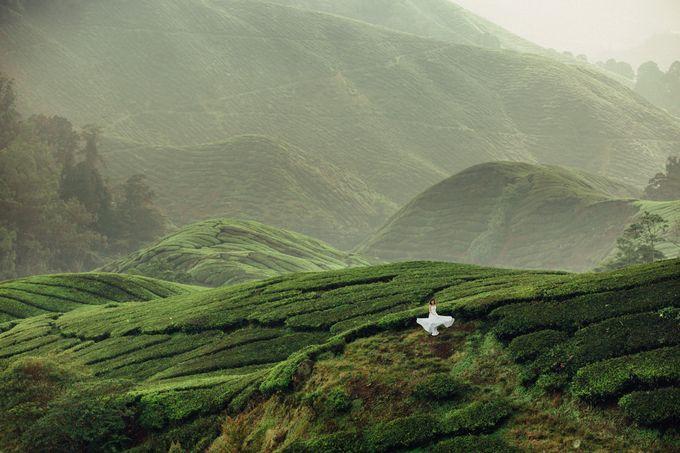 Tea Plantation Bridal Shoot by Peter Herman Photography - 004