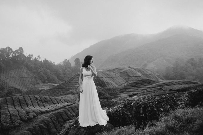 Tea Plantation Bridal Shoot by Peter Herman Photography - 006