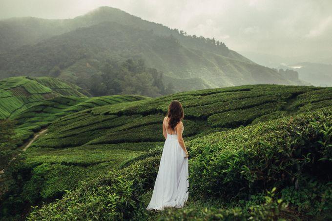 Tea Plantation Bridal Shoot by Peter Herman Photography - 007