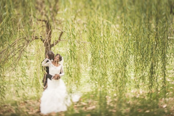 Creative Wedding Photograpy by Adibe Photography - 007