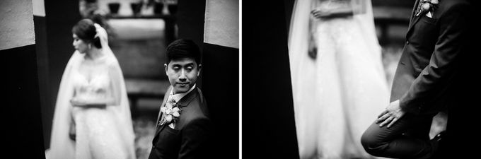 Jessika & Nox Wedding by The Daydreamer Studios - 006