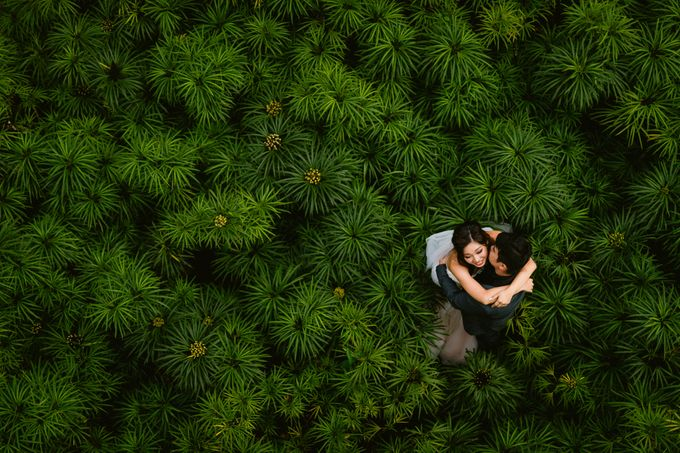 Pre-Wedding - Mike & Mary by Alan Ng Photography - 011