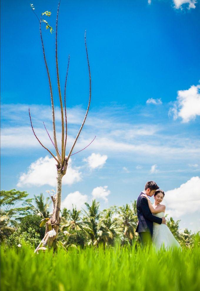 PREWEDDING PHOTOSHOOT by Visesa Ubud - 011