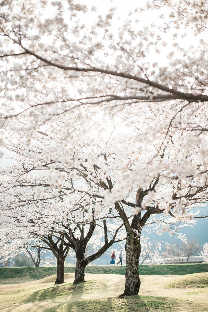 Lovers in Japan by Nathan Wu Photography - 027