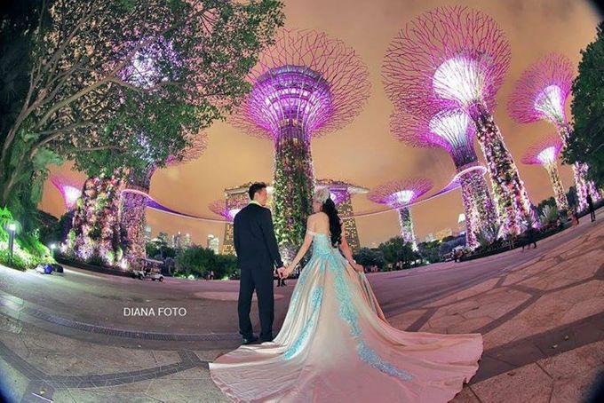 Hapitwan & Debby Susanto Prewedding by Diana Photo - 003