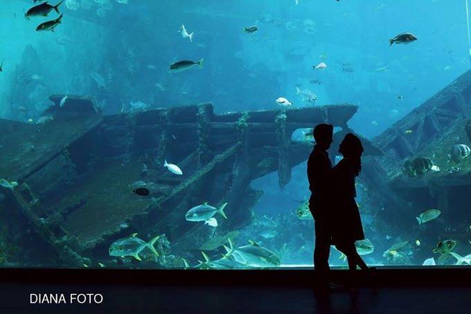 Hapitwan & Debby Susanto Prewedding by Diana Photo - 004