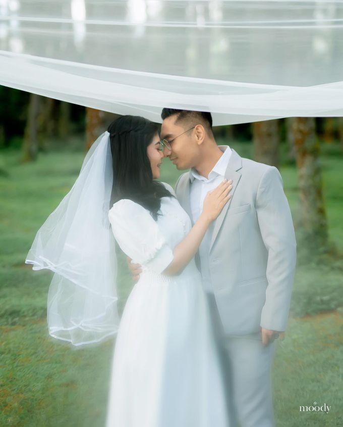 Prewedding tiara & aldy by Pine Hill Cibodas - 002