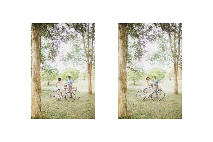 Portraiture of Vengtesh and Kalaiselvi by Fern.co - 020