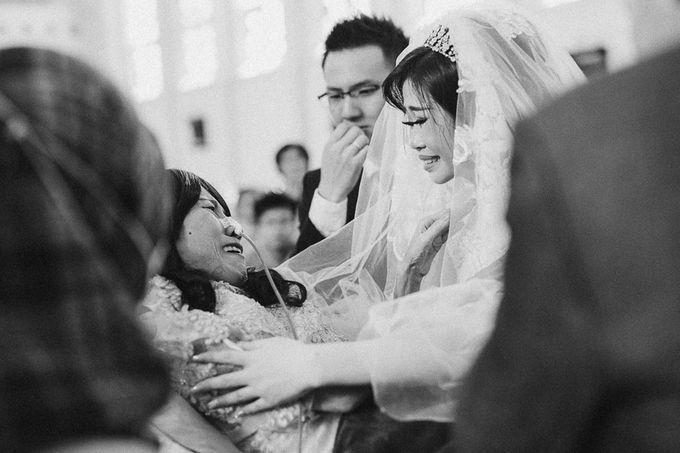 Wedding Of Alex & Olvi by My Day Photostory - 032