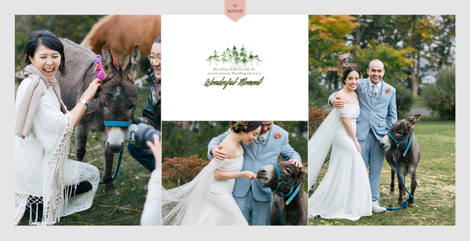 Chris and Mabel by Mayad Studios - 024