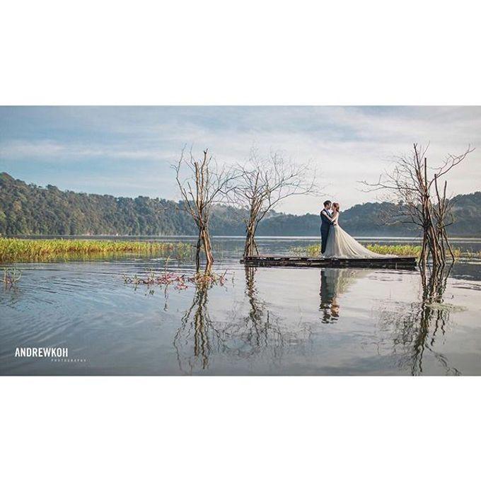 Andrew Koh Photography Portfolio by Andrew Koh Photography - 019