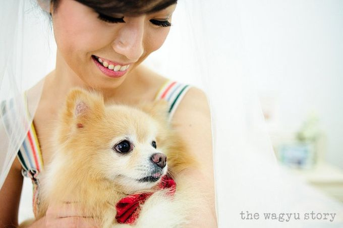 Melvin & Vero | the Wedding by The Wagyu Story - 007