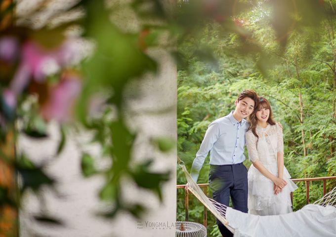 Korea Pre-Wedding Photoshoot - Studio 29 by Willcy Wedding by Willcy Wedding - Korea Pre Wedding - 017