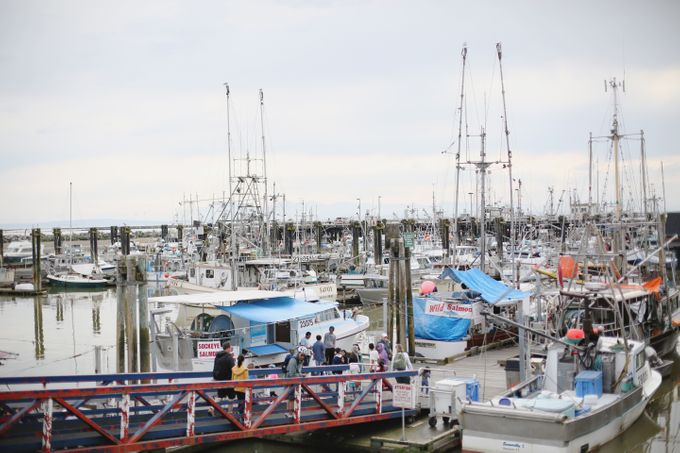 Engagement shoot at Steveston Richmond by Rebecca Ou Photography - 002