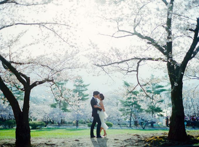 Lovers in Japan by Nathan Wu Photography - 010