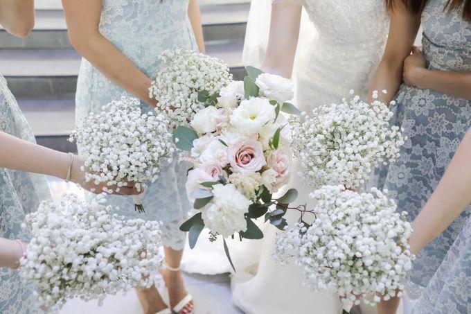 Blush and White Elegance by Eufloria - 004