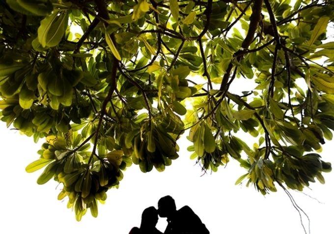 Best Of Wedding by destination  photographers - 008