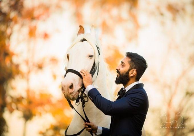 Best Of Wedding by destination  photographers - 013