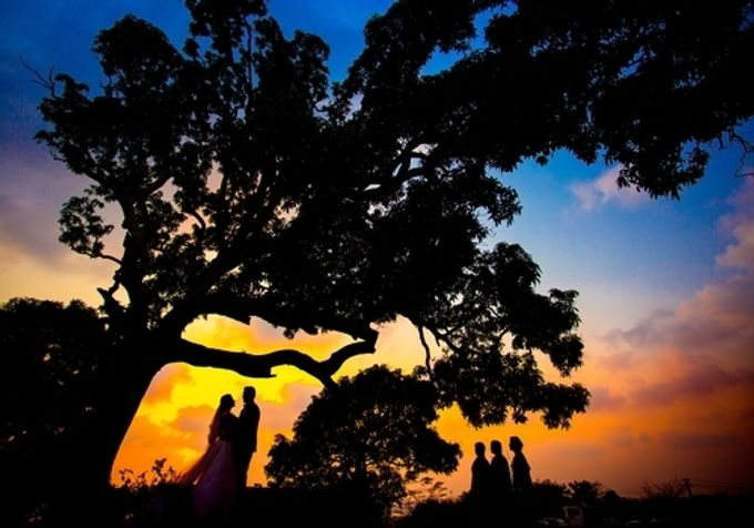 Best Of Wedding by destination  photographers - 017
