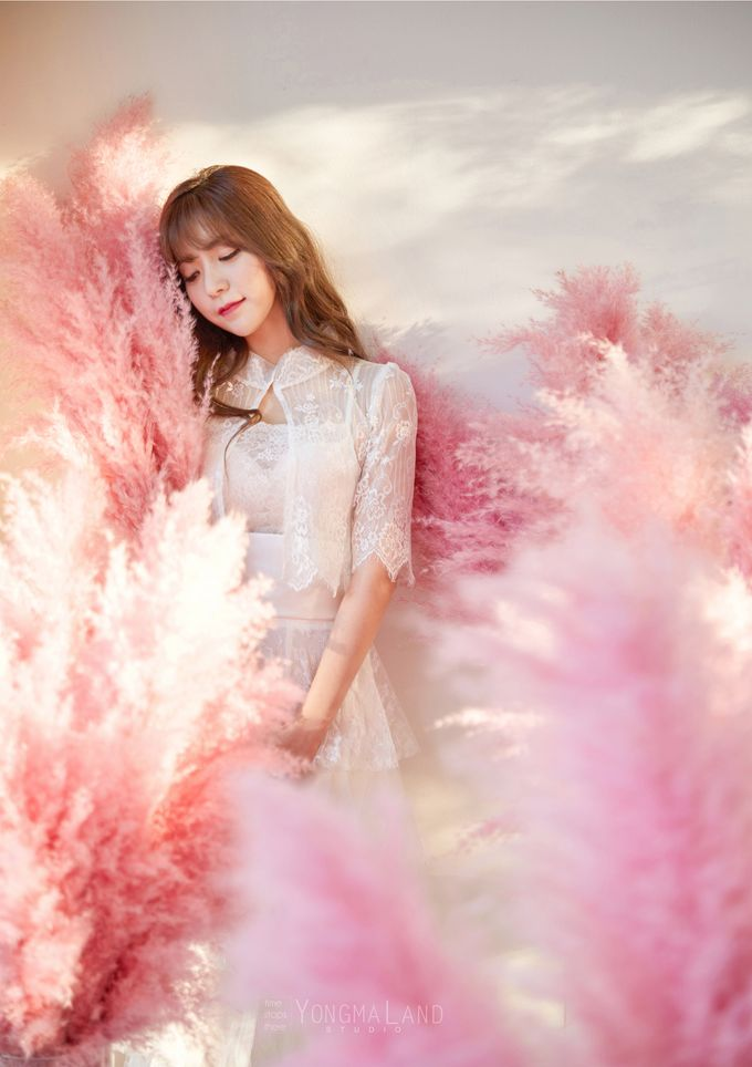 Korea Pre-Wedding Photoshoot - Studio 29 by Willcy Wedding by Willcy Wedding - Korea Pre Wedding - 020