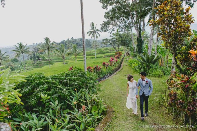 Banyuwangi, I'm in Love by Imperial Photography Jakarta - 029
