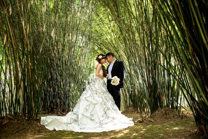 Outdoor Pre Wedding Photo Shoot by RedCarpet Bridal Artistry - 012