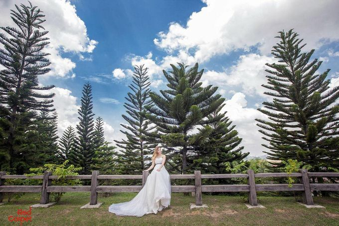 Outdoor Pre Wedding Photo Shoot by RedCarpet Bridal Artistry - 008