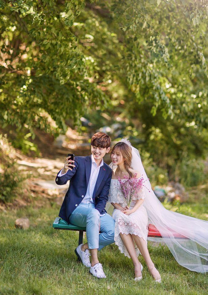 Korea Pre-Wedding Photoshoot - Studio 29 by Willcy Wedding by Willcy Wedding - Korea Pre Wedding - 021