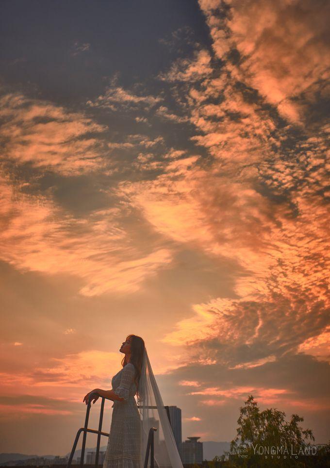 Korea Pre-Wedding Photoshoot - Studio 29 by Willcy Wedding by Willcy Wedding - Korea Pre Wedding - 022