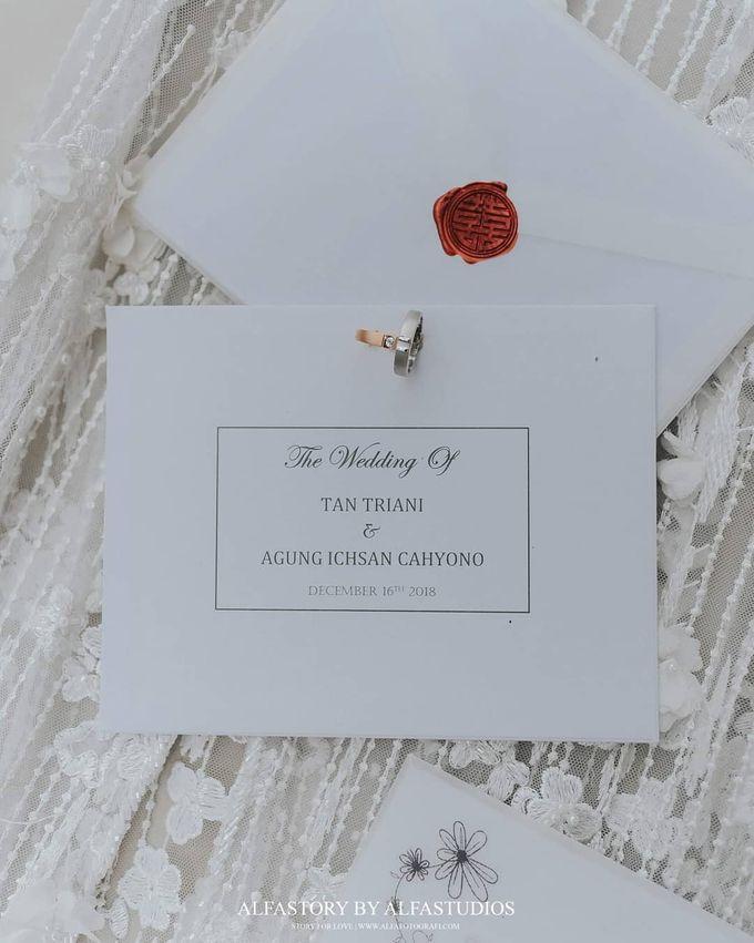 The Wedding Of Tantri & Agung by Alfa.co - 011