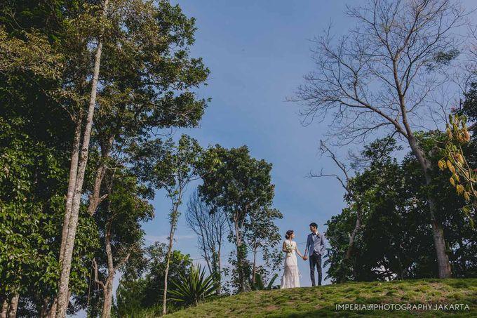 Banyuwangi, I'm in Love by Orange Organizer - 034