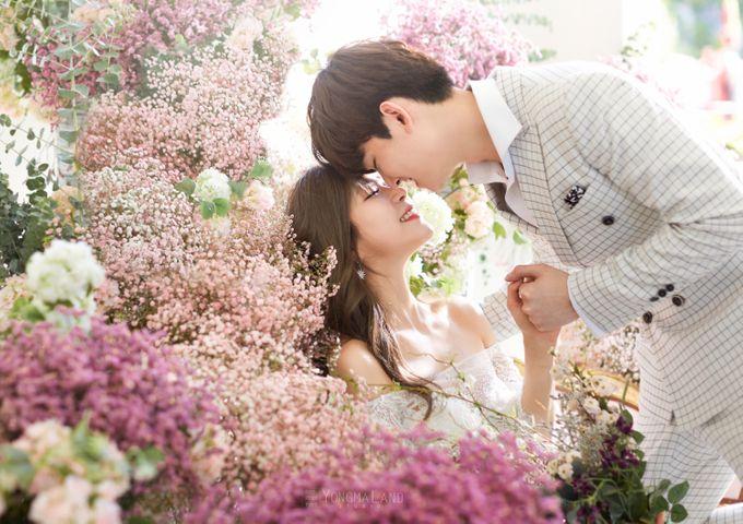Korea Pre-Wedding Photoshoot - Studio 29 by Willcy Wedding by Willcy Wedding - Korea Pre Wedding - 024