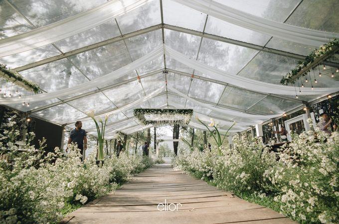 The Wedding Of Ferdi & Tania by Elior Design - 035