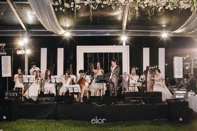 The Wedding Of Ferdi & Tania by Elior Design - 040