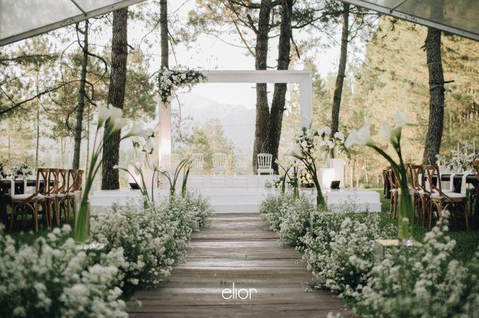 The Wedding Of Ferdi & Tania by Elior Design - 041