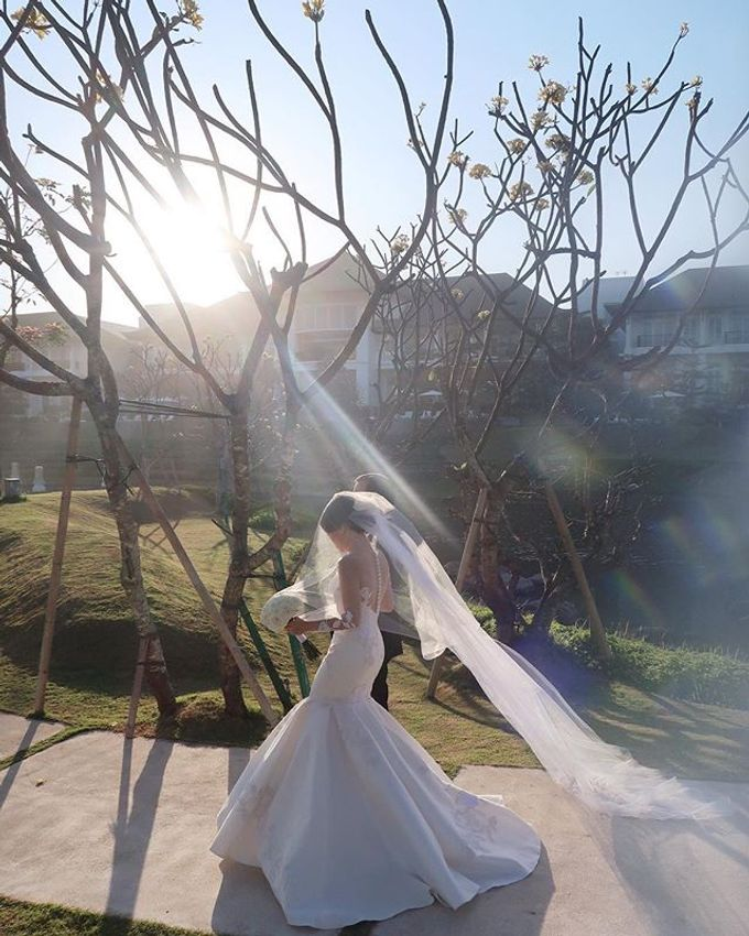 Dersi & Andree Wedding by Terralogical - 001