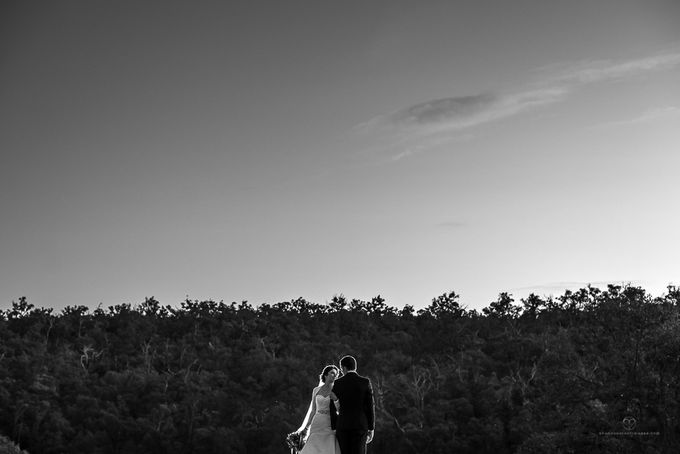 Ryan & Sarvenaz by Shannon Stent Images - 002